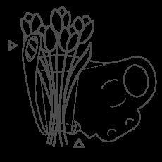 Zawiń Bluma Bag wokół kwiatów