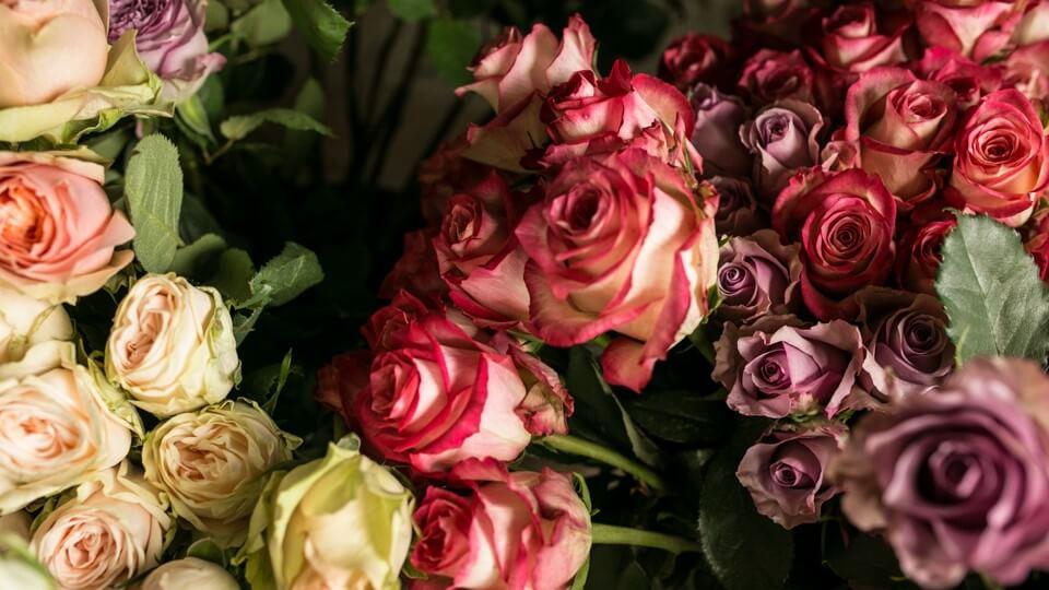 Gdzie Najlepiej Kupowac Kwiaty Wsparcieflorystow Pl