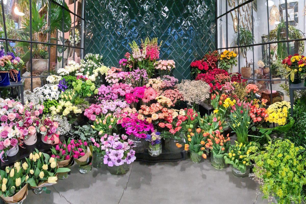 Chłodnia na kwiaty w Kwieciarni